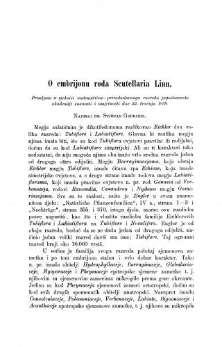 O embrijonu roda Scutellaria Linn