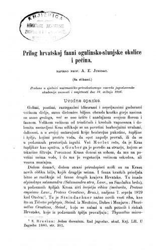 Prilog hrvatskoj fauni ogulinsko-slunjske okolice i pećina