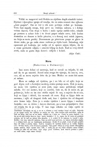 Mora : (Bukovica u Dalmaciji.) / V. Ardalić