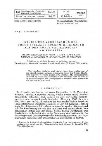 Studie der Vorderzaehne des Ursus spelaeus Rosenm. & Heinroth aus der Hoehle Velika Pećina, NW Kroatien