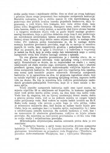 Izvještaj o istraživanju sastava vegetacije sumpornog vrela Mokošice kod Dubrovnika / Z. Klas
