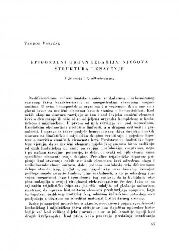 Epigonalni organ selahija, njegova struktura i značenje
