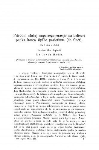 Prirodni slučaj superregeneracije na heliceri pauka kosca Opilio parietinus (de Geer)