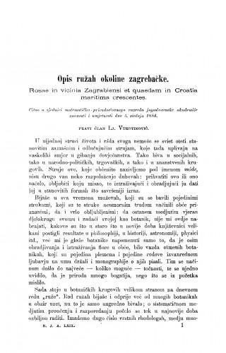 Opis ružah okoline zagrebačke