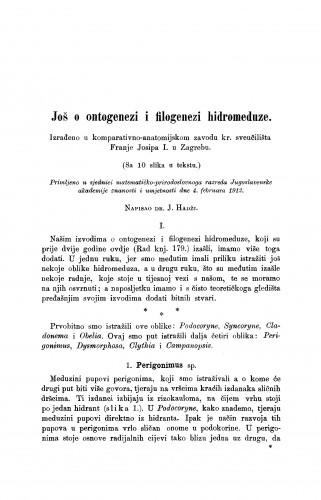 Još o ontogenezi i filogenezi hidromeduze.