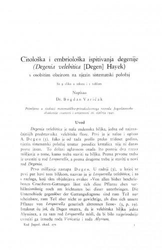 Citološka i embriološka ispitivanja degenije (Degenia velebitica (Degen) Hayek)