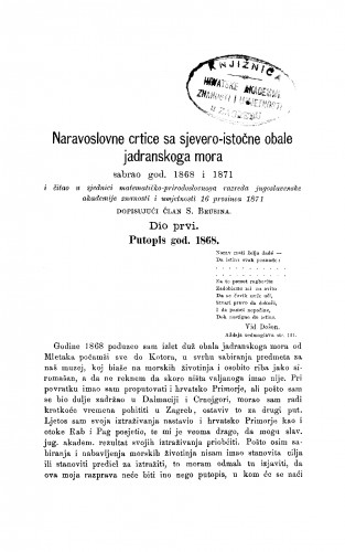 Naravoslovne crtice sa sjevero-istočne obale Jadranskoga mora (sabrao god. 1868 i 1871.) : RAD