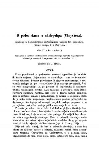 O podocistama u skifopolipa (Chrysaora).