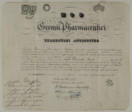 Tirocinijska diploma Maksimilijana Batistića