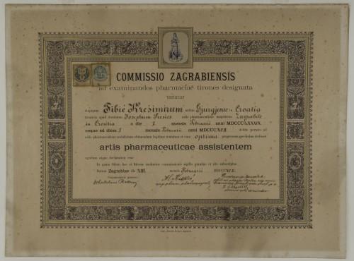 Tirocinijska diploma Krešimira Fibića
