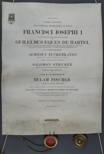 Diploma doktora medicine Bele Fischera