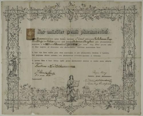 Tirocinijska diploma Gulielma Papa