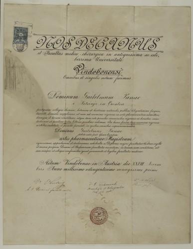 Diploma magistra farmacije Julija Panca