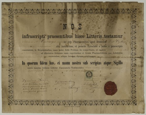 Tirocinijska diploma Ivana Csillagha
