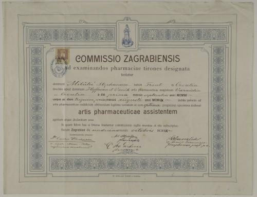 Tirocinijska diploma Stjepana Milčetića