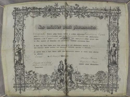 Tirocinijska diploma Valentina Vouka