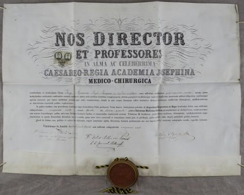Diploma doktora medicine Georga Stojanovića