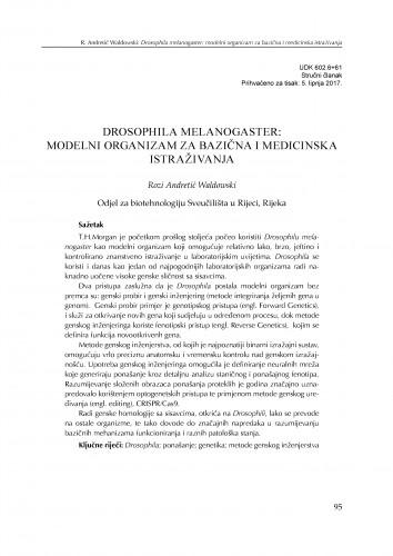 Drosophila melanogaster: modelni organizam za bazična i medicinska istraživanja