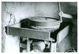 Žrvnji va kuće Lojza Šušnja [Gavazzi, Milovan (1895-1992) ]
