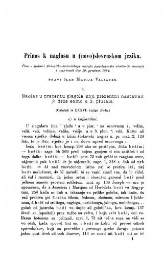 Prinos k naglasu (novo)slovenskom jeziku