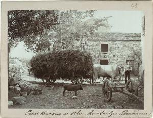 Pred kućom u Montrilju [Ptašinsky, Josef (1863-1908) ]