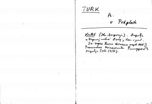 Turk A.