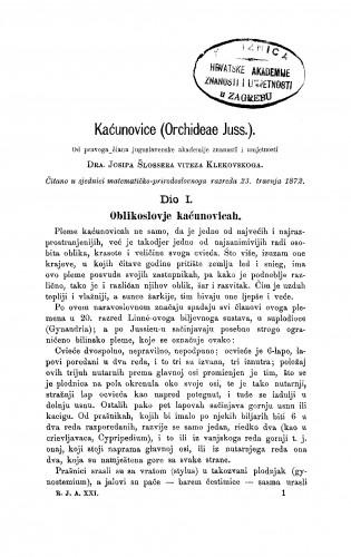 Kaćunovice (Orchideae Juss.) : RAD