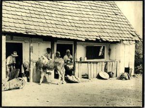 Fotografija zagrebačke stambene bijede 1924.?