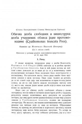 Obična deoba slobodnih i višestruka deoba učaurenih oblika jedne protomanadine (Cyathomonas truncata Fres)
