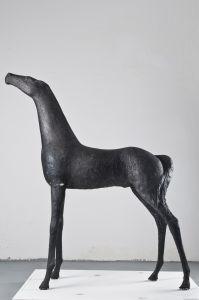 Mladi konj