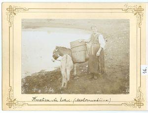 Kmetica na lokvi (Motovunšćina) [Ptašinsky, Josef (1863-1908) ]