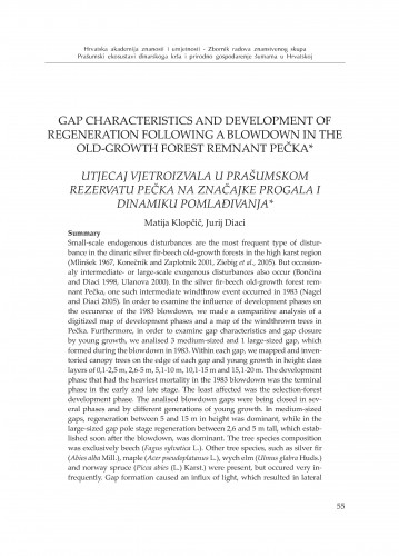 Gap characteristics and development of regeneration following a blowdown in the old-growth forest remnant Pečka
