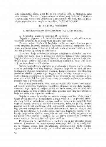 Izvještaj o citološkim istraživanjima leukotiobakterija / Z. Devidé