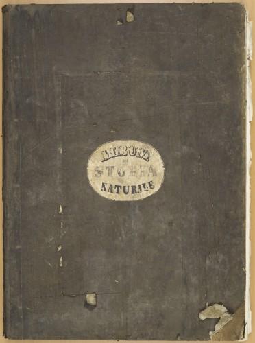 Synoptischer Atlas der Zoologie : nach Cuvier's Classification: mit 15 Karten / von George Cuvier