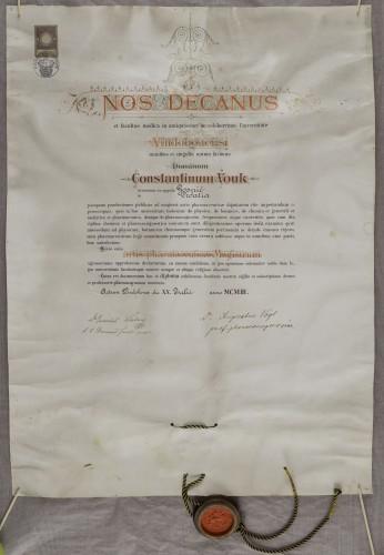 Diploma magistra farmacije Konstantina Vouka