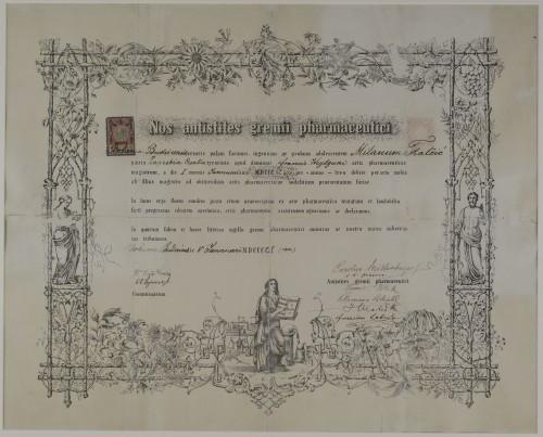 Tirocinijska diploma Milana Tkalčića