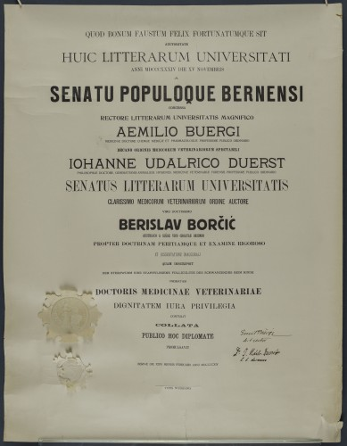 Diploma doktora veterinarske medicine Berislava Borčića