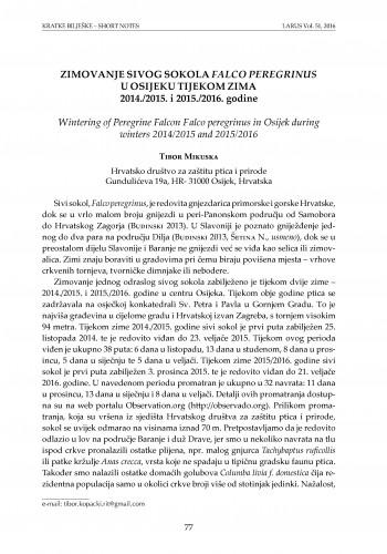 Zimovanje sivog sokola Falco peregrinus u Osijeku tijekom zima 2014./2015. i 2015./2016. godine / Tibor Mikuska