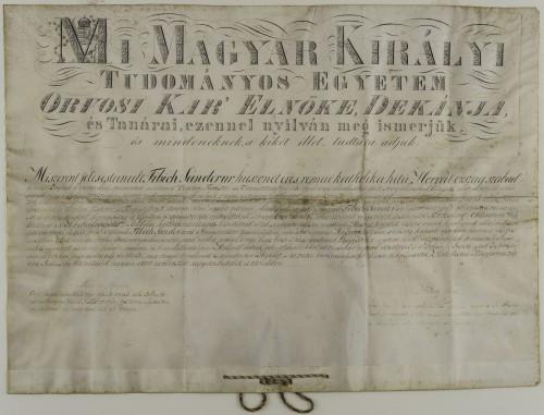 Diploma Šandora Fibića