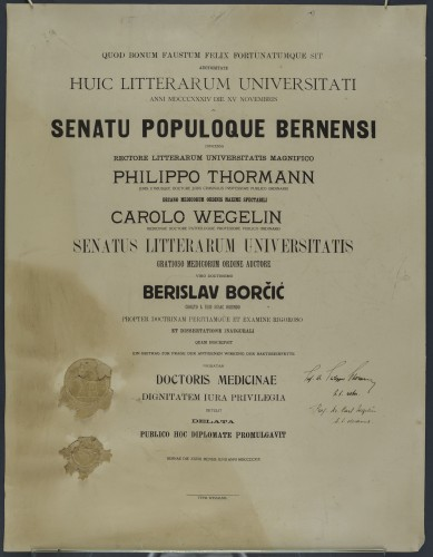Diploma doktora medicine Berislava Borčića