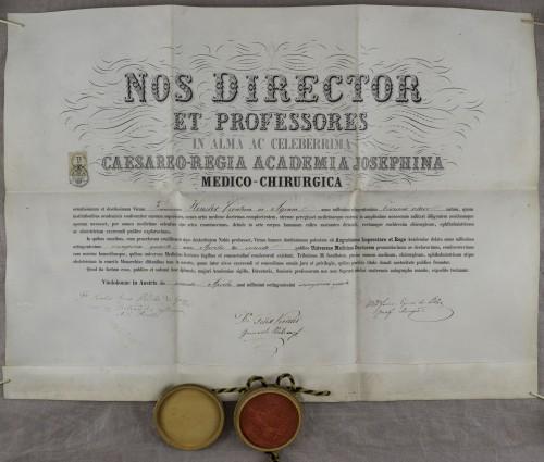 Diploma doktora medicine Franje Henslera