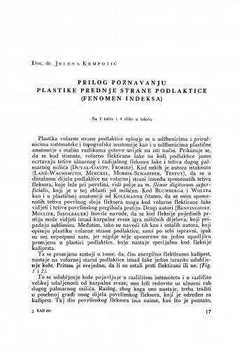 Prilog poznavanju plastike prednje strane podlaktice (Fenomen indeksa)