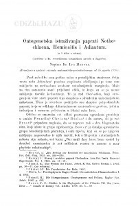 Ontogenetska istraživanja paprati Nothochlaena, Hemionitis i Adiantum / I. Horvat