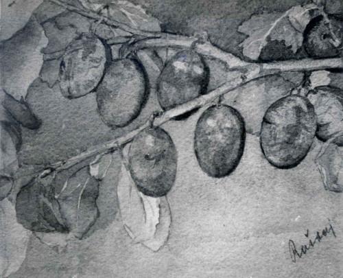 Raškaj, Slava(1877-1906): Grana sa šljivama ]