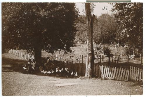 Pravoslavno groblje [Simonović, Radivoj (1858-1950) ]