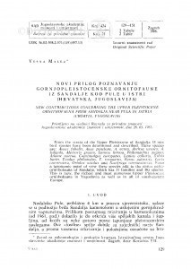 Novi prilog poznavanju gornjopleistocenske ornitofaune iz Šandalje kod Pule u Istri (Hrvatska, Jugoslavija) / V. Malez
