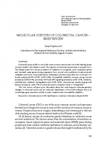Molecular subtypes of colorectal cancer – brief review / Sanja Kapitanović