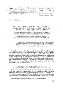 Actinostromaria katzeri n. sp. iz malmskog vapnenca Pakline kod Duvna u jugozapadnoj Bosni / A. Milan