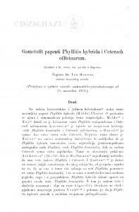 Gametofit paprati Phyllitis hybrida i Ceterach officinarum / I. Horvat