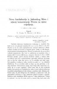 Nova fotobakterija iz Jadranskog Mora i utjecaj koncentracije H-iona na njeno svijetljenje / V. Vouk, V. Škorić i Z. Klas